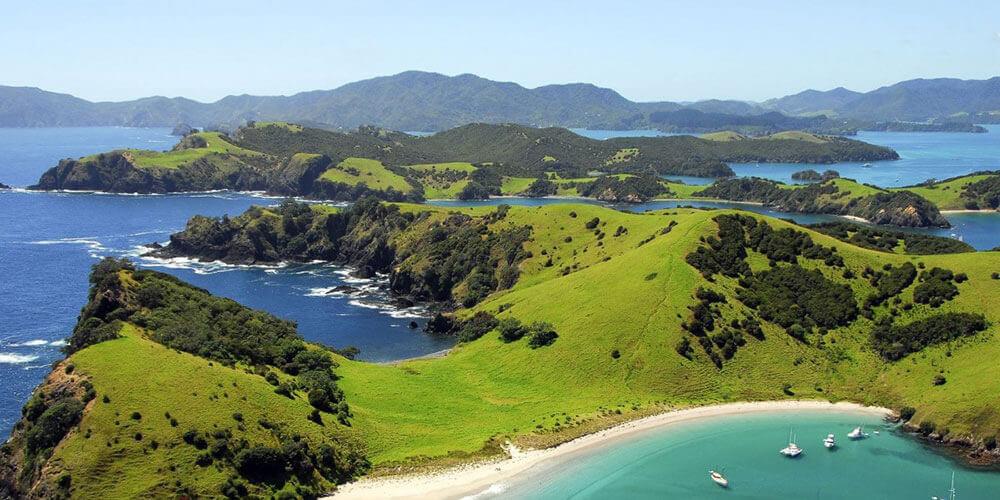 Auckland Hauraki Gulf Fishing Charters