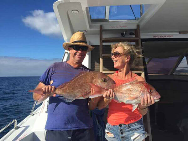 Snapper caught on Auckland Fishing Charters