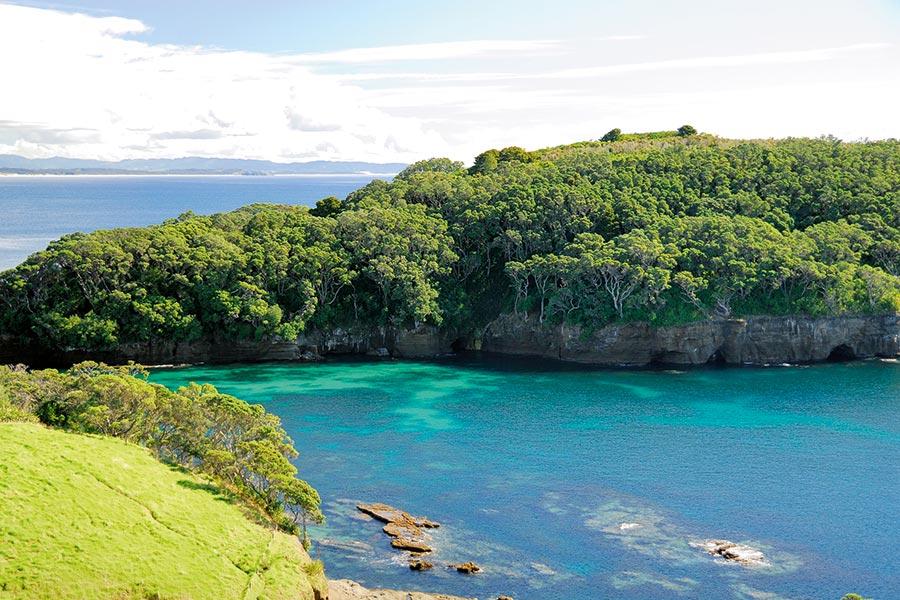 Auckland Harbour Islands